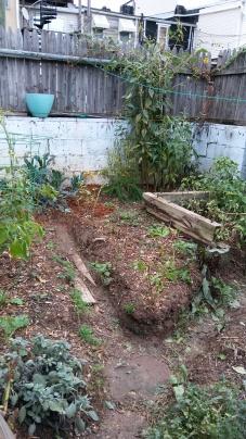 Nov Garden